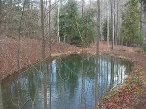 Trout Pond at Earthaven